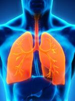 Die Lunge lässt sich mit antiviralen ätherischen Ölen schützen