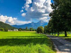 Pestizidfreie Landwirtschaft in Österreich