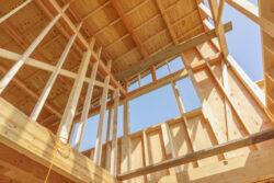 Baupioniere erstellen wohngesunde Häuser