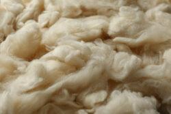 Wohngesund wohnen_Schafwolle statt Styropor